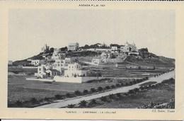 Tunisie - Carthage : La Colline - Carte PLM 1931 - Tunisie