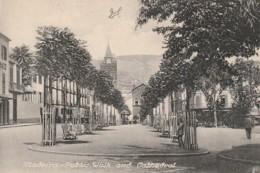 *** MADEIRA ***MADEIRA  Public Walk - TTBE - Madeira