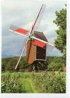 GELRODE - Aarschot (Vlaams-Brabant) - Molen/moulin - Mooie WENSKAART Incl. Envelop Van De Moedermeule In Werking - Aarschot