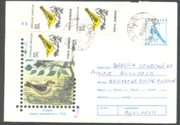 75368- HOUSE SPARROW, BIRDS, COVER STATIONERY, 1996, ROMANIA - Moineaux