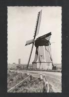 ST. PHILIPSLAND - Molen De Hoop  (NL 10333) - Autres