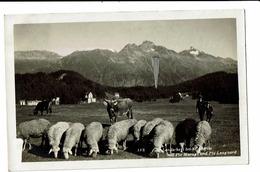 CPA - Carte Postale -Suisse-Grisons - St Moritz-bad-Piz Languard-1931 - S5013 - GR Grisons