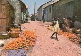 B55279 Sénégal - Fadiouth, Marché Aux Mangues - Sénégal