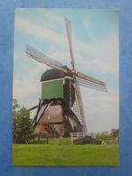 PAYS-BAS-SCHELLUINEN Moulin - Pays-Bas