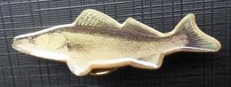 PERCH * FISH  PLIM - Animals