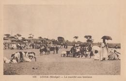 SENEGAL: Saint-Louis, Kaolack, Bengo, Louga, M'Bour, Thiès - Lot De 12 Cartes - Sénégal