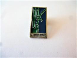 PINS La Bambouseraie En Cévennes Générargues Dans Le Gard 30 / 33NAT - Cities