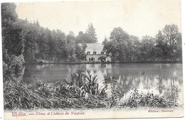 Wellin NA36: Etang Et Château De Neupont 1907 - Wellin
