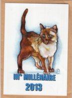 B55348 Chat - IIIe Millénaire 2013 - Imagier Géo Thiercy - Cartes Postales