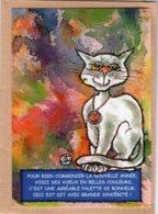 B55358 Chat  - Imagier Géo Thiercy - Cartes Postales