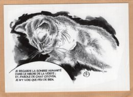 B55368  Chat - Un Chat Citoyen - Imagier Géo Thiercy - Cartes Postales