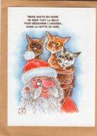 B55372 Chat - Catus, La Mansarde Aux Chats - Imagier Géo Thiercy - Cartes Postales