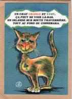 B55377 Chat - Humourachat, Un Chat Irlandais  - Imagier Géo Thiercy - Cartes Postales