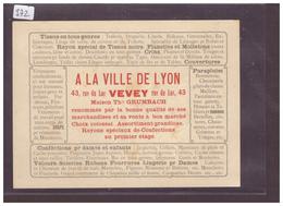 DISTRICT DE VEVEY - VEVEY - MAGASINS DE CONFECTION A LA VILLE DE LYON - TB - VD Vaud