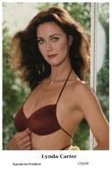 LYNDA CARTER - Film Star Pin Up PHOTO POSTCARD - C35-49 Swiftsure Postcard - Artistas