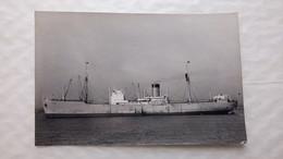 Carte Photo Du Cargo TOGO Dans Les Années 1930 / Copyright Photograph A. Duncan Gravesend Kent - Cargos