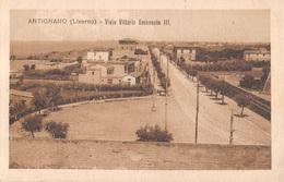 Italia - ANTIGNANO, ( Livorno ) Viale Vittorio Emanuele III - Livorno