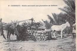 DJIBOUTI  - Noria Arrosant Une Plantation De Dattiers ( ânes ) - CPA - - Djibouti