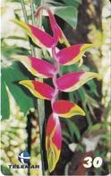TARJETA DE BRASIL DE UNA HELICONIA  (FLOR-FLOWER-FLORES) - Fleurs
