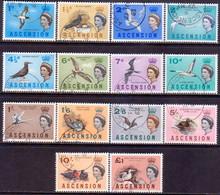 ASCENSION 1963 SG #70-83 Compl.set Used CV £55 Birds - Ascension