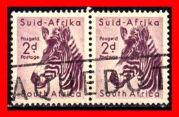 SUID AFRICA 2 SELLOS AÑO 1954 - Oficiales
