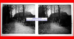 Dirigeable ZEPPELIN L49 - Abattu à Bourbonne Les Bains Dans La Forêt 1917 - Vue Stéréoscopique - Plaques De Verre
