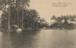 Indonesia - Java - Garoet - A Fish-pond Near Tjipanas - Indonésie