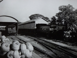 Très Belle Photo Ancienne Guyana Georgetown Train Gare Locomotive  ! - Stations With Trains
