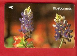 SINGAPORE  GPT Card - Fleurs