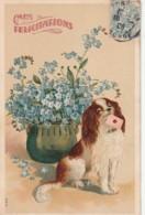 *** Illustrateur  ***   King Charles Embossed Chien Et Fleurs Myosotis   Relief TTB - Fleurs
