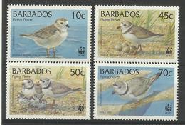 BARBADOS   1999  WWF   BIRDS   SET   MNH - Oiseaux