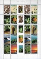 Dutch Antilles 2007 Flora And Fauna Block Issue MNH Fossil Turtle Grasshopper Cactus Mangrove Rainforest Beach Sunset - Timbres