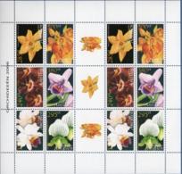 Dutch Antilles 2006 Orchids Block Issue MNH Sylvan Sprite, Jean Sabourin, Wedgewood, Linden, Disa - Orchidées