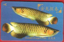 SINGAPORE  GPT Card - Télécartes
