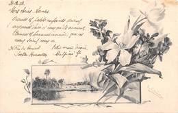 Carte Avec Fleurs, Envoyée De Belgique Pour La Bonne Année 1903 - Flores