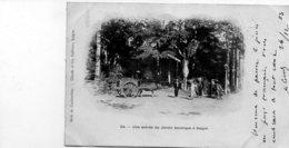 Une Entrée  Du Jardin Botanique à SAIGON  (timbre  Indochine) - Viêt-Nam