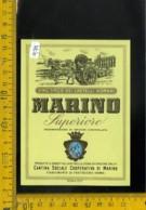 Etichetta Vino Liquore Castelli Romani Marino Frattocchie Roma - Etichette