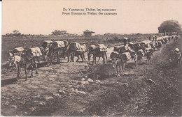 CPA CHINE : DU YUNNAN AU THIBET, LES CARAVANES - China