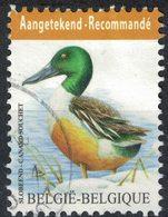 Belgique 2015 Oblitération Ronde Used Animaux Oiseaux Canard Souchet Recommandé - Belgium