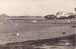 CARANTEC - Le Port - Carantec