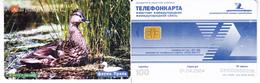 Phonecard   Russia. Ekaterenburg  100 Units  01.04.2004 - Russie