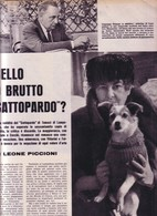 (pagine-pages)TOMASI DI LAMPEDUSA Successo1959/03. - Libri, Riviste, Fumetti