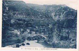 SAINT CHELY DU TARN .48. Le Pont Et Les Gorges Du Tarn.. - France