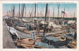 Florida Tarpon Springs The Sponge Fleet In Harbor Curteich - Etats-Unis