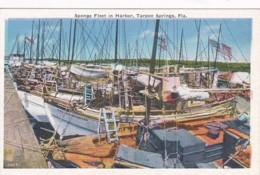 Florida Tarpon Springs Sponge Fleet In Harbor - Etats-Unis