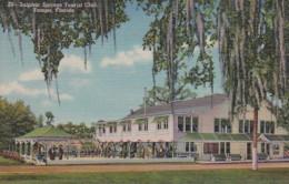 Florida Tampa Sulphur Springs Tourist Club Curteich - Tampa
