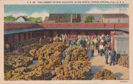 Florida Tarpon Springs The Largest Sponge Exchange In The World Curteich - Etats-Unis