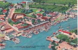 Florida Tarpon Springs Sponge Fleet And Exchange As Seen From Airliner - Etats-Unis