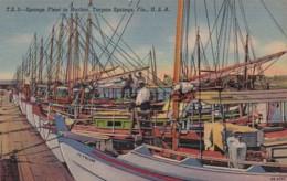 Florida Tarpon Springs Sponge Fleet In Harbor Curteich - Etats-Unis