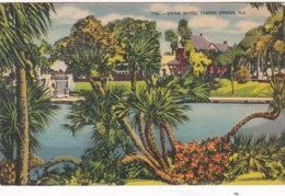 Florida Tarpon Springs Spring Bayou 1952 - Etats-Unis